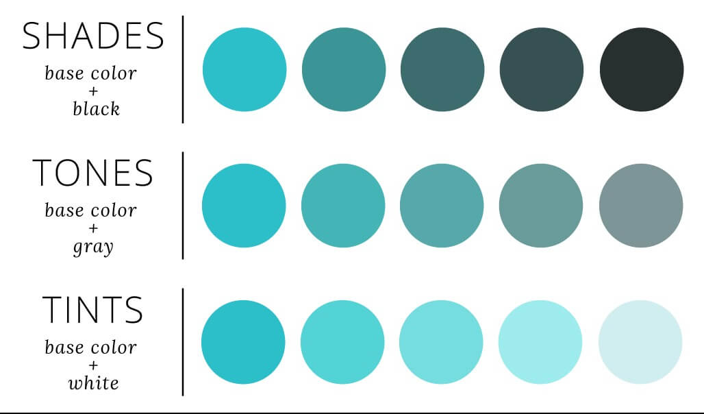 Website Design Trends 2019;Monochromatic color scheme